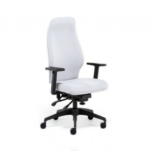 Quatro Activ Posture Back care Office Chair